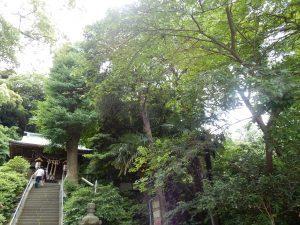 走水神社 横須賀 ご利益 御朱印 パワースポット 拝観時間 駐車場 地図 アクセス 見どころ 34