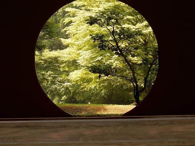 北鎌倉 明月院 鎌倉三十三観音巡り ご利益パワースポットで御朱印 紫陽花